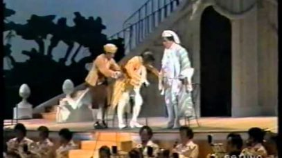 Il signor bruschino Pesaro 1988 Dara Devia Rinaldi Gonzales