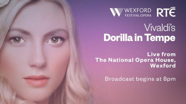 <span>FULL </span>Dorilla in Tempe Wexford 2019