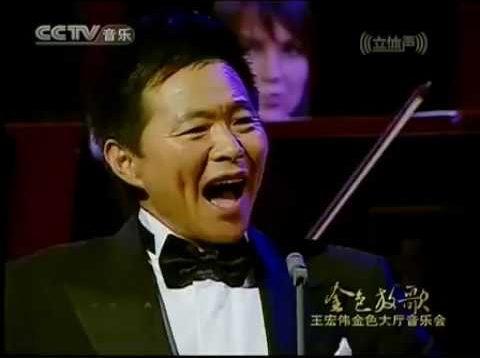 <span>FULL </span>Golden Songs Concert Vienna 2008 Wang Hongwei