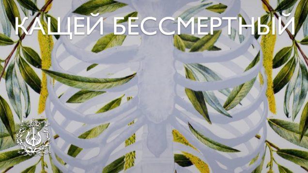 <span>FULL </span>Kashchey the Immortal St.Petersburg 2017