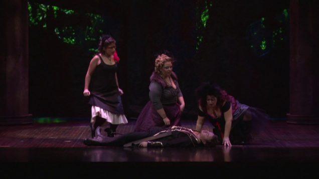 <span>FULL </span>Die Zauberflöte Michigan 2013 MSU Opera Theatre