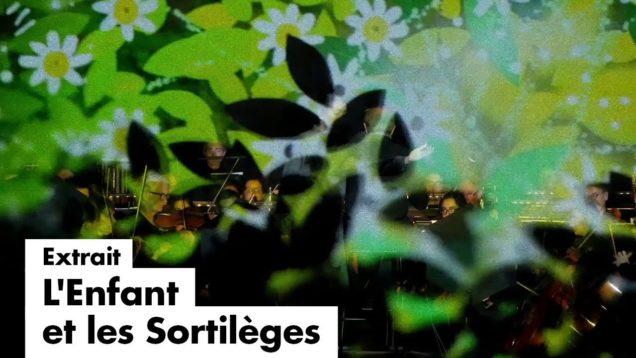 <span>FULL </span>L'Enfant et les sortileges Lyon 2019