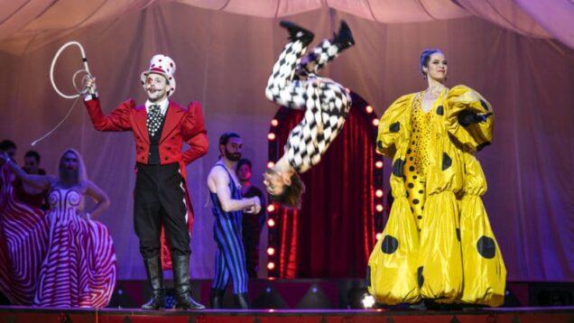 circus-days-and-nights1-800×533