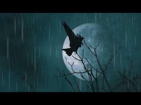 <span>FULL </span>Il corvo or The Raven (Frigatti) Amazonas 2021