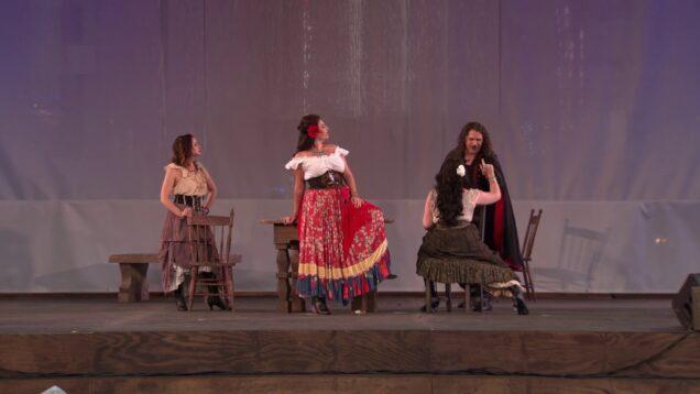 Carmen Picnic Performance New York 2021